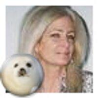 Sandra Conti  | Social Profile