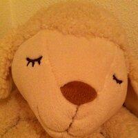 yumi   Social Profile