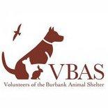 The VBAS | Social Profile