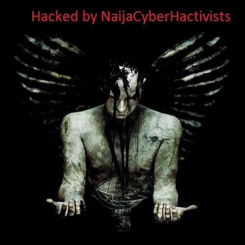 NaijaCyberHactivists Social Profile