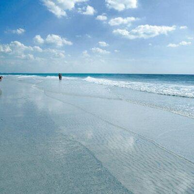 Beach Bum | Social Profile