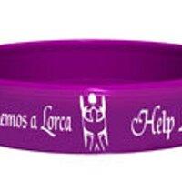 Ayudemos a Lorca   Social Profile