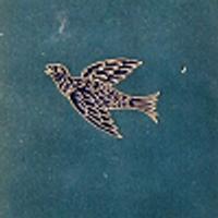 Lucybird | Social Profile
