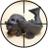 The profile image of acousticxshout