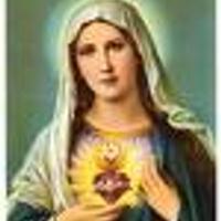 Mother Rose | Social Profile
