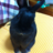 kazu_mochi