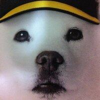 TOMOMI aka 金の蛇口   Social Profile
