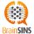 @brainsins_es