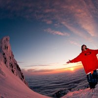 Sammy Carlson | Social Profile