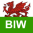 Brain Injury Wales