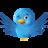TweetingBizness