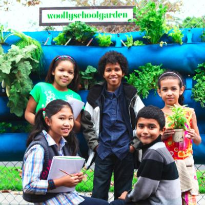 woollyschoolgarden | Social Profile