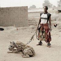 Hyena1979 | Social Profile
