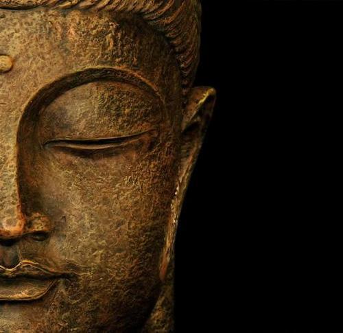 Bodhisattva Social Profile