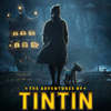 Adventures of Tintin Social Profile