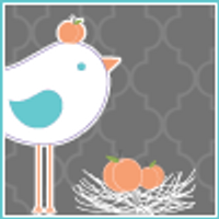 Sweet Birdie's Nest | Social Profile