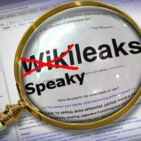 SpeakyLeaks