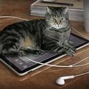 iPadとか