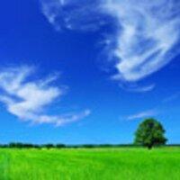 All Air Purification | Social Profile