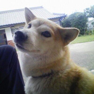 Natsu   Social Profile