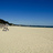 Twitter result for Post Office from sandbanks_beach