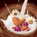 Vochelle Chocolate