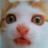 Visit @KiteKisumi on Twitter