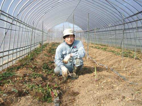masato 原発避難農民 Social Profile
