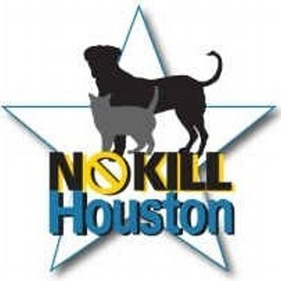 No Kill Houston | Social Profile