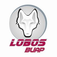 Club Lobos Buap | Social Profile
