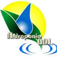 @HidroponiaGDL2