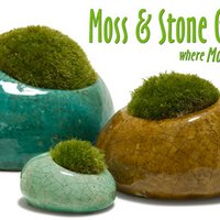Moss Rocks!™ | Social Profile