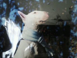 The profile image of barazuki