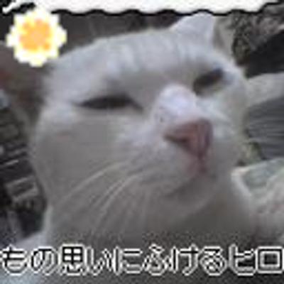 ひげ子@BL!読まずにはいられないッ! | Social Profile