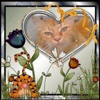 Cleopatra Kitty   Social Profile