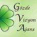 gozde vizyon's Twitter Profile Picture