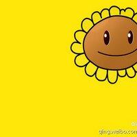 向阳花   Social Profile