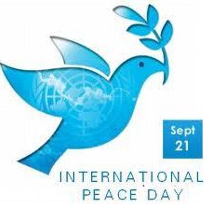 Peace Volunteer | Social Profile