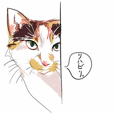 にゃおっく | Social Profile