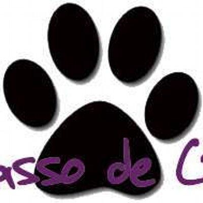 passodecao - Yara | Social Profile