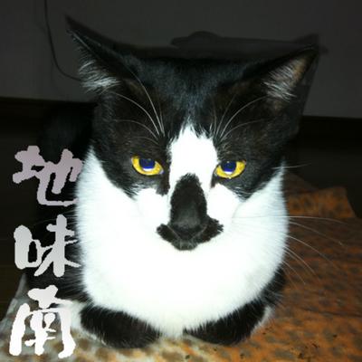 ユンイ (Yuji Shimomura) | Social Profile