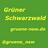 @gruene_nsw