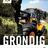 The profile image of Grondig