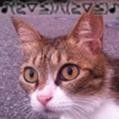 ぶえぶえ | Social Profile