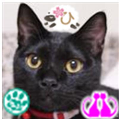 ひろみ | Social Profile