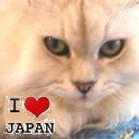 まく☆彡 いのうえひろゆき | Social Profile