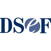 The DSEF | Social Profile