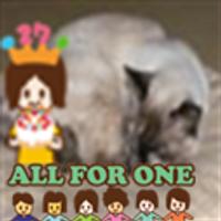 Hiroko N | Social Profile