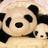The profile image of yoko_babypanda