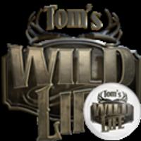 Tom's Wild Life | Social Profile
